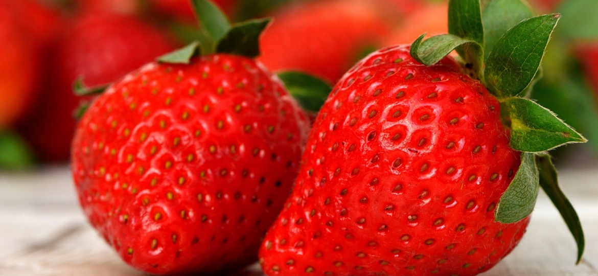 The Secret of Strawberries - The Beauty Berry